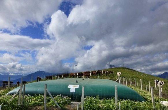 Stockage d'eau pour abreuvement – 150 m3